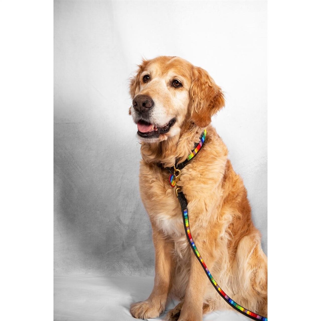 Rainbow Dog Leash - Handmade in Kenya