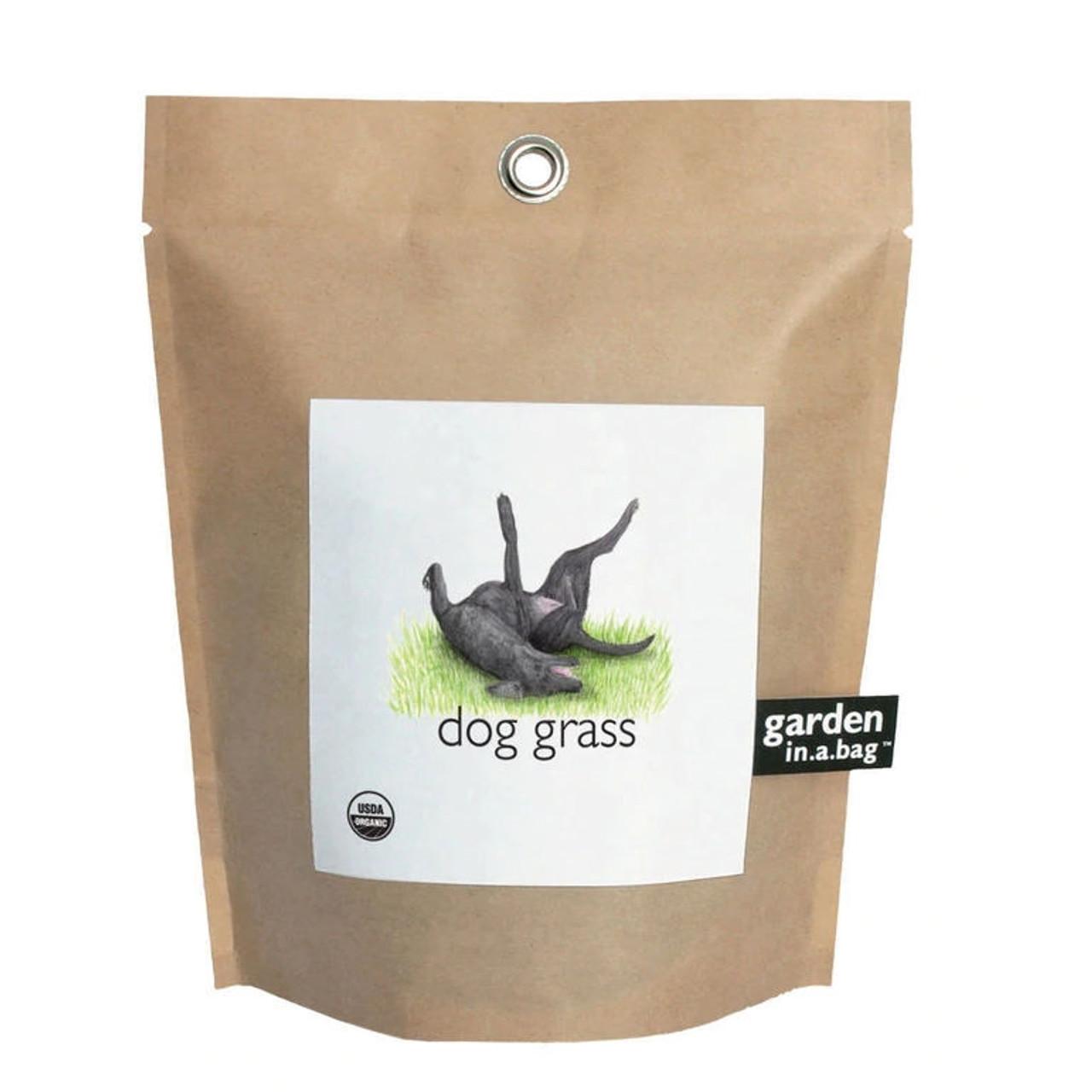 Garden in a Bag - Dog Grass
