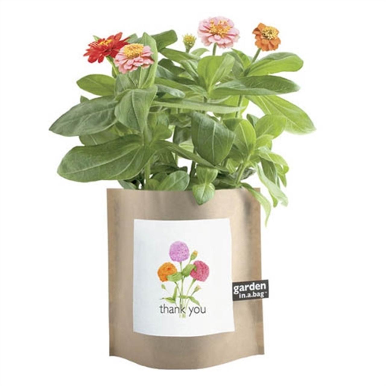 Thank You Gift - Garden in a Bag Zinnias