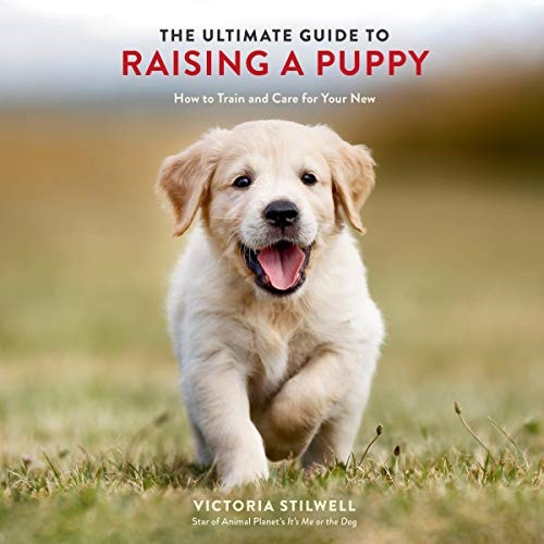 Pet Books - The Ultimate Guide to Raising a Puppy