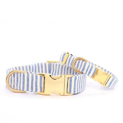 Stylish Dog Collar - Blue Stripes - XS (8-12