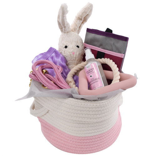 New Puppy Gift Basket - Puppy Kisses