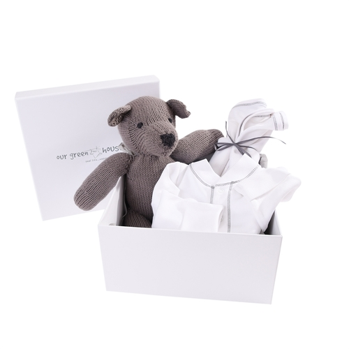 Organic Teddy Bear Gift Set