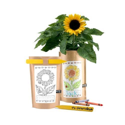Kid's Gardening Gift - Garden-in-a-Bag - Sunflower