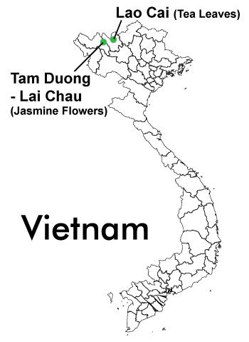 jasmine-tea-vietnam-map.jpg