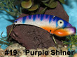 Purple Shiner - #19
