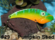Pumpkin Seed - #29