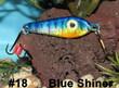 Blue Shiner