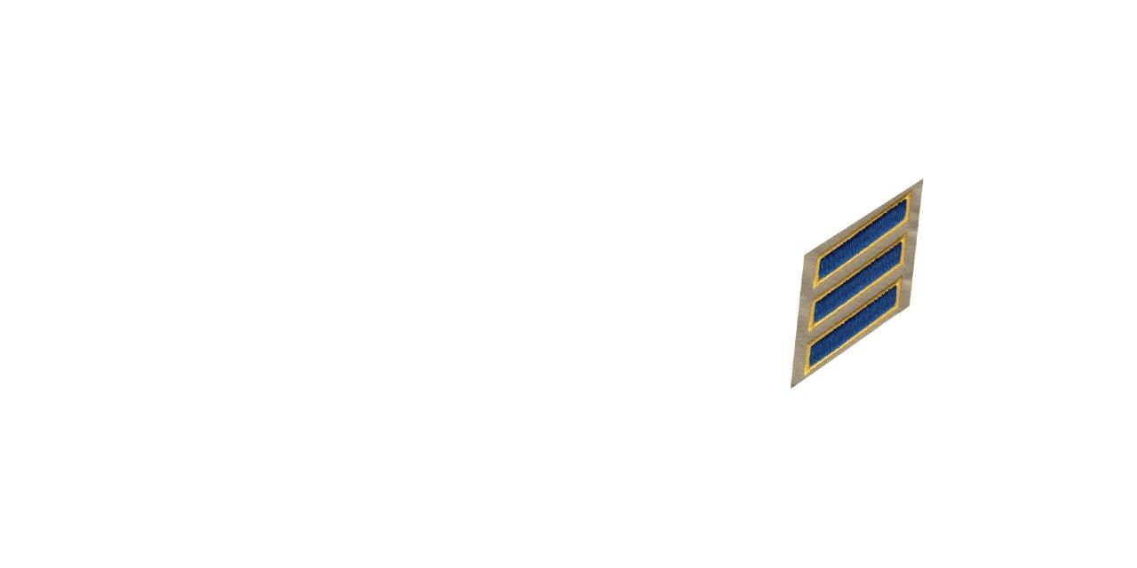 Service Stripes / Bars