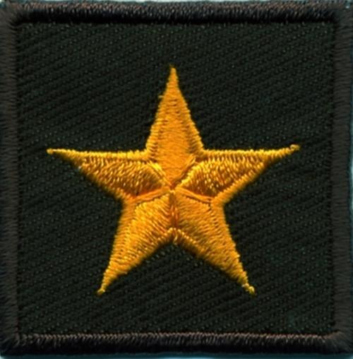 "General (1 Star), Embroidered Rank, Pair, Dark Gold/Brown, 1-1/2x1-1/2"""