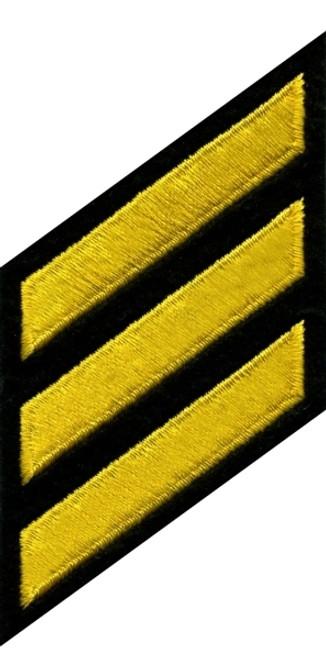 "HASHMARKS - Continuous, Felt, Med Gold/Black, 2x3/8"" Stripe"