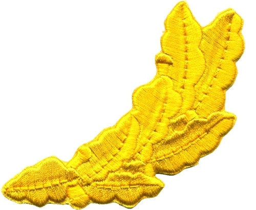 """Scrambled Egg Patch, Gold, 3-5/8x1-1/2"""""""