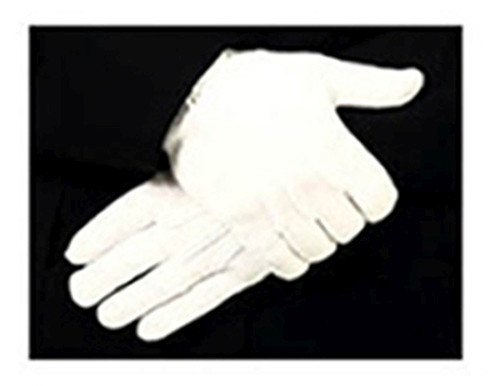 Parade Gloves, Nylon Stretch with Raised Pointing, Snap