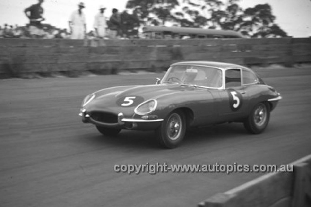 630021 - Bob Jane, E Type Jaguar - Catalina Park Katoomba  1963 - Photographer Bruce Wells.