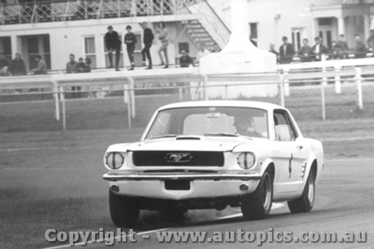 67029 - P. Fahey Ford Mustang - Warwick Farm 1967