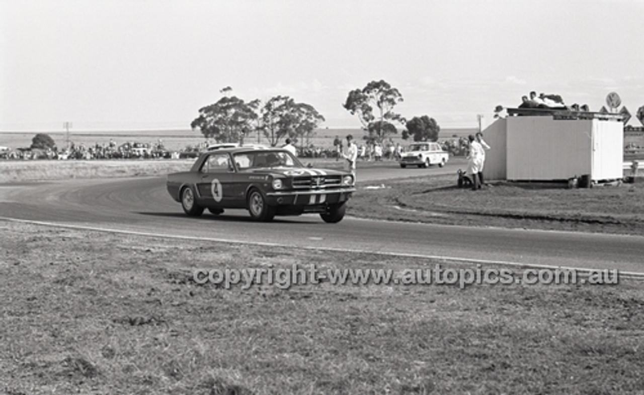 Calder 1965 - Photographer Peter D'Abbs - Code 65-PD-C-016
