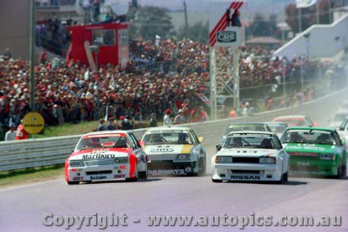 84700c - The Start - Bathurst 1984 - Brock/Commodore -  Fury/Nissan Bluebird - Johnson Falcon -  Photographer Lance J Ruting