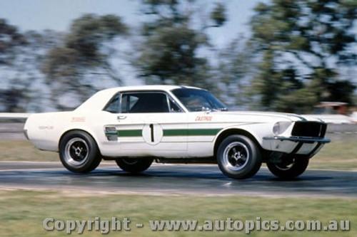 69133 - Ian  Pete  Geoghegan - Ford Mustang - Warwick Farm 1969 -  Photographer Jeff Nield