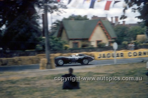 56515 - B. Stillwell, D Type Jaguar - Australian Grand Prix  Albert Park 1956 -  Photographer Simon Brady