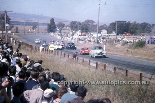 60018 - Bathurst Easter 1960 - Photographer Simon Brady