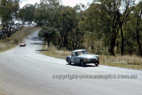 61411 - J. Blanch, MGA - Bathurst 1961 - Anne Blackwood Collection