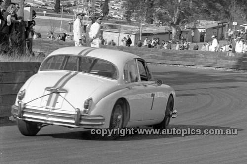 64109 - Bob Jane Jaguar - Catalina Park Katoomba 1964 - Photographer Bruce Wells