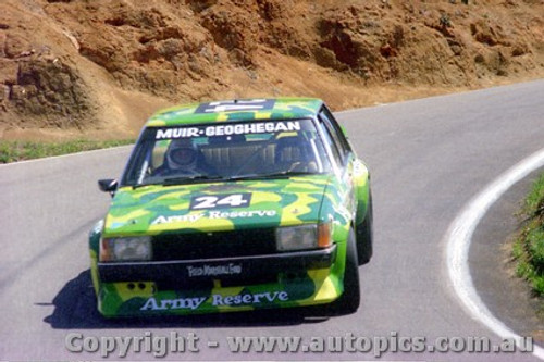 81719 - Muir / Geoghegan - Bathurst 1981 - Ford Falcon