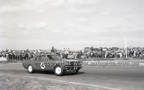 Calder 1965 - Photographer Peter D'Abbs - Code 65-PD-C24165-012