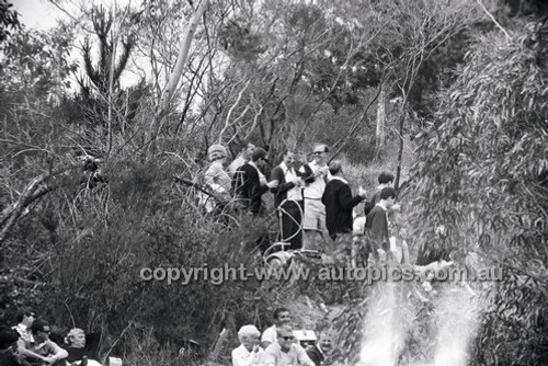 Catalina Park Katoomba - 8th November 1964 - Code 64-C81164- 101
