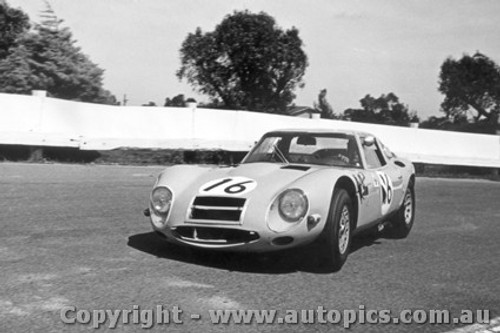 66413 - Kevin Bartlett Alfa Romeo TZ2  - Sandown 1966