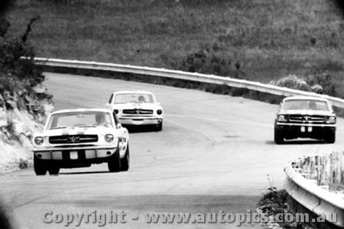 65034 - Geoghegan / Beechey / Jane  Ford Mustangs Catalina Park Katoomba 1965