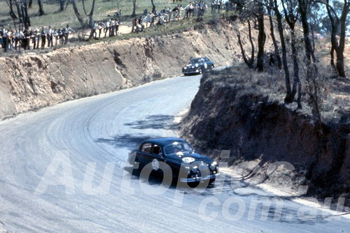 61029 - Ian (Pete) Geoghegan - 3.4 Jaguar - Bathurst Easter 1961 - Photographer Peter Wilson
