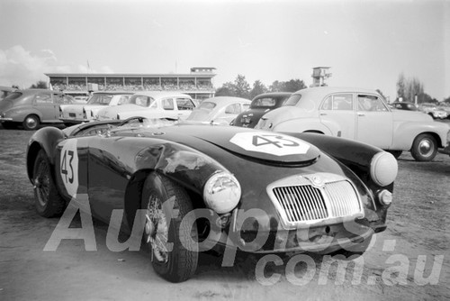 61061 - L. Summerfield, MGA - Warwick Farm 1961 - Paul Manton Collection