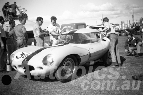 61066 - Frank Matich, D Type Jaguar - Warwick Farm 1961 - Paul Manton Collection