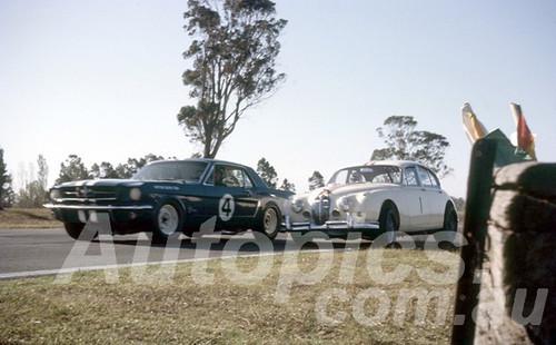 65306 - Norm Beechey, Mustang & Bob Jane, Jaguar - Warwick Farm 1965 - Peter Wilson Collection