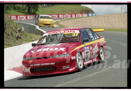 Bathurst FIA 1000 15th November 1999 - Photographer Marshall Cass - Code 99-MC-B99-016