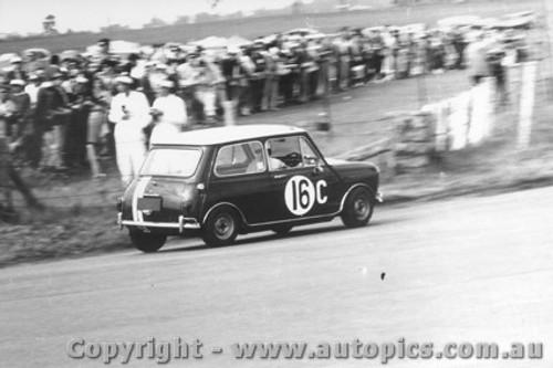 66731  -  Arentz / Seton  -  Morris Cooper S - Bathurst 1966