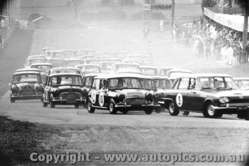 66738  -  Brown / Cook   Morris Cooper S - ahead of a pack of Minis into the first corner - Bathurst 1966