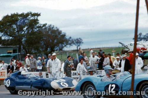 58446 - R. Phillips Cooper Jaguar  & C. Whatmore Lotus Climax - Bathurst 1958 - Photographer Adrien Schagen