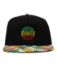 Pineapple Rasta Logo Snapback hat