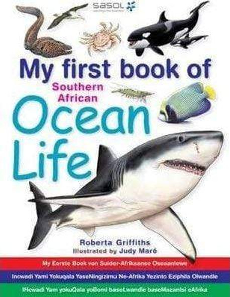 my-first-book-of-southern-african-ocean-life-snatcher-online-shopping-south-africa-28426554769567.jpg