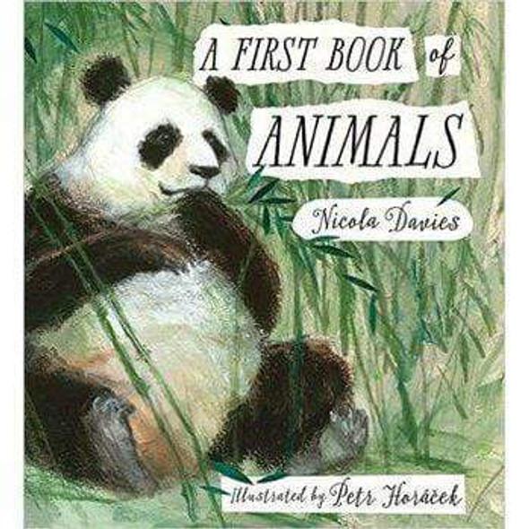 first-book-of-animals-snatcher-online-shopping-south-africa-28091890532511.jpg