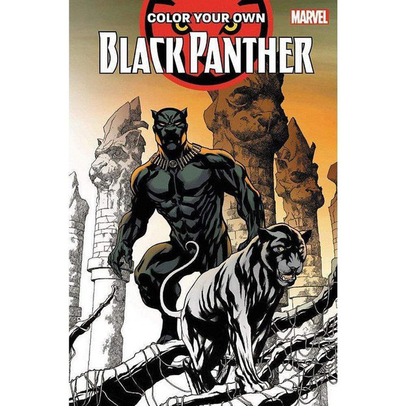 color-your-own-black-panther-snatcher-online-shopping-south-africa-28078746566815.jpg