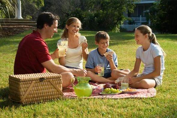 folding-picnic-blanket-snatcher-online-shopping-south-africa-28053274067103.jpg