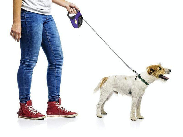 5m-retractable-dog-leash-snatcher-online-shopping-south-africa-21808028942495.jpg
