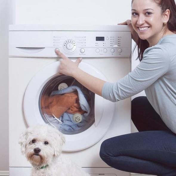 dryer-sheep-snatcher-online-shopping-south-africa-17782029320351.jpg
