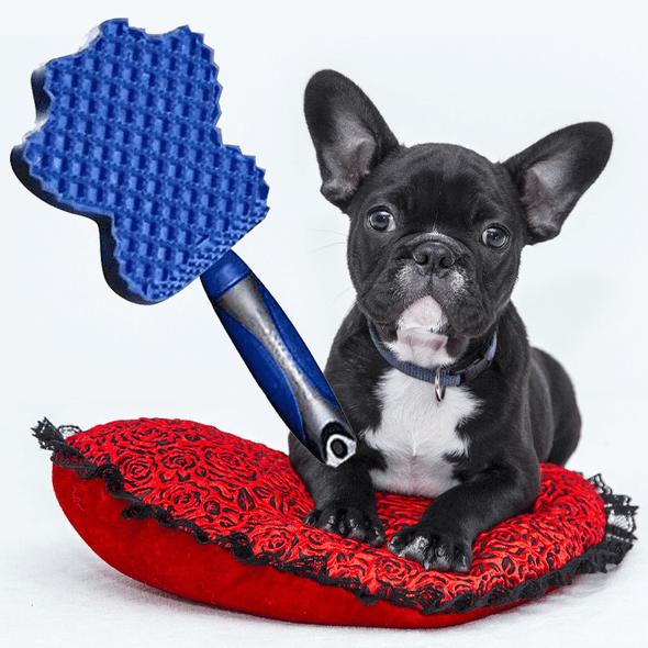 pet-massaging-brush-snatcher-online-shopping-south-africa-18595573301407.png