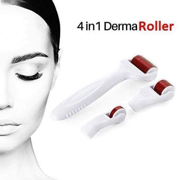 4-in-1-derma-roller-snatcher-online-shopping-south-africa-17784040587423.jpg