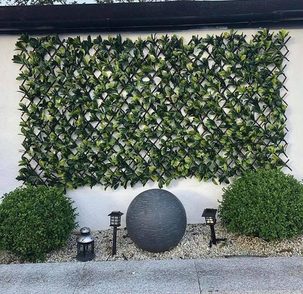 fine-living-patio-expandable-trellis-1-2m-snatcher-online-shopping-south-africa-29072442589343.jpg