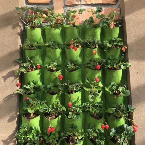 fine-living-pockets-wall-planter-snatcher-online-shopping-south-africa-29505923023007.jpg